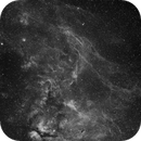 IC1318, DWB111 Ha Wide Field,                                Eric Coles (coles44)