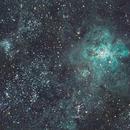 NGC2070 Tarantula Nebula,                                David Stevenson