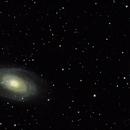 M81,                                Mark Stiles