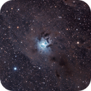 NGC7023,                                Joan Riu