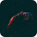 NGC 6992 - The Eastern Veil Nebula,                                Tom Davis