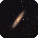NGC253 - Galaxy in Sculptor,                                Stellario