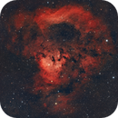 NGC 7822 - A big question in space?,                                Sektor