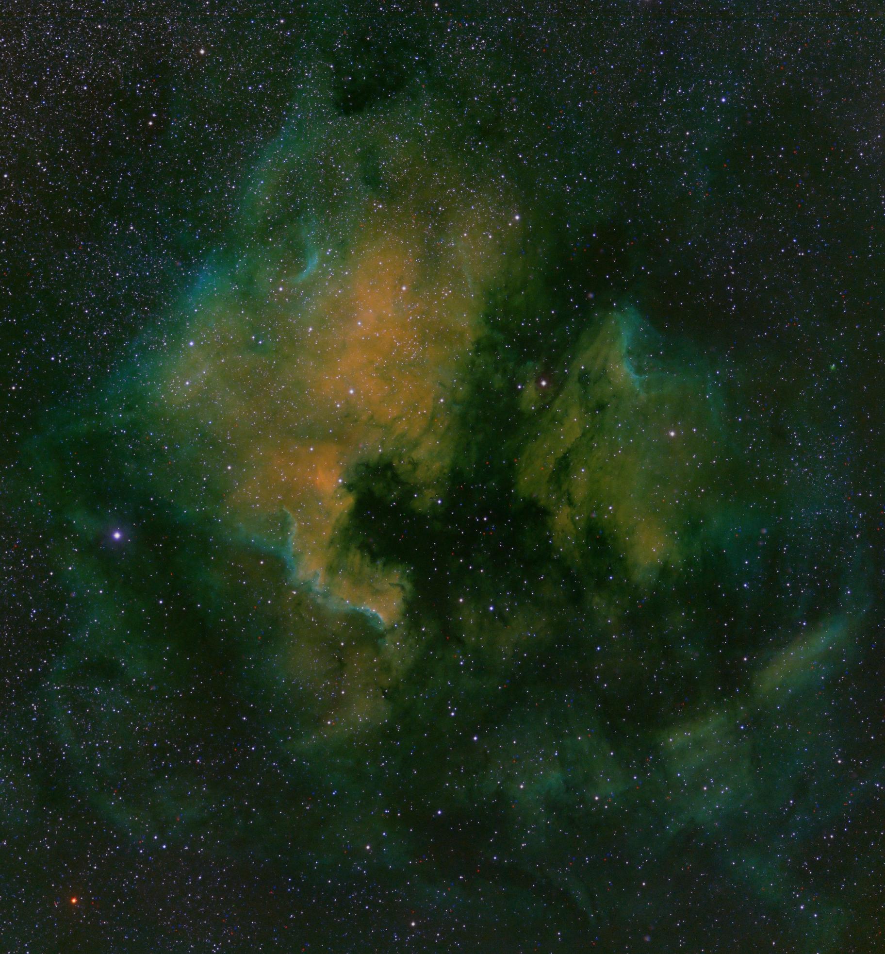 Nébuleuse North America NGC 7000,                                Roger Bertuli