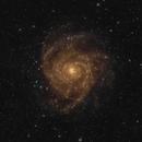 IC342, Hidden Galaxy,OSC,                                wsg