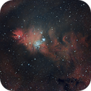 Cone Nebula & Christmas Tree Cluster,                                Laurence Pap