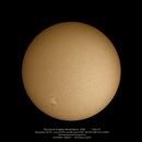 The Sun in Hydrogen Alpha,                                Dominique Callant
