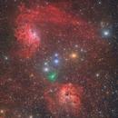 Flaming Star Nebula, Tadpole Nebula and Comet ATLAS,                                Steed Yu
