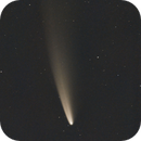 The C/2020 F3 Neowise Comet,                                Angelo F. Gambino