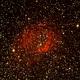 Lowers Nebula,                                David Holko