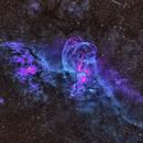 NGC 3576,                                Alex Woronow