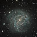 M83,                                Henry Kwok