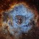 The Rosette Nebula in Hubble Palette (SHO),                                Marcel Nowaczyk