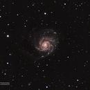 Pinwheel Galaxy,                                Everett Quebral