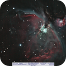 Orion Nebula M42 and M43,                                Michael A. Phillips