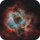 The Rosette (C49) in Narrowband Natural – First Light for William Optics FLT 91,                                Gary Lopez