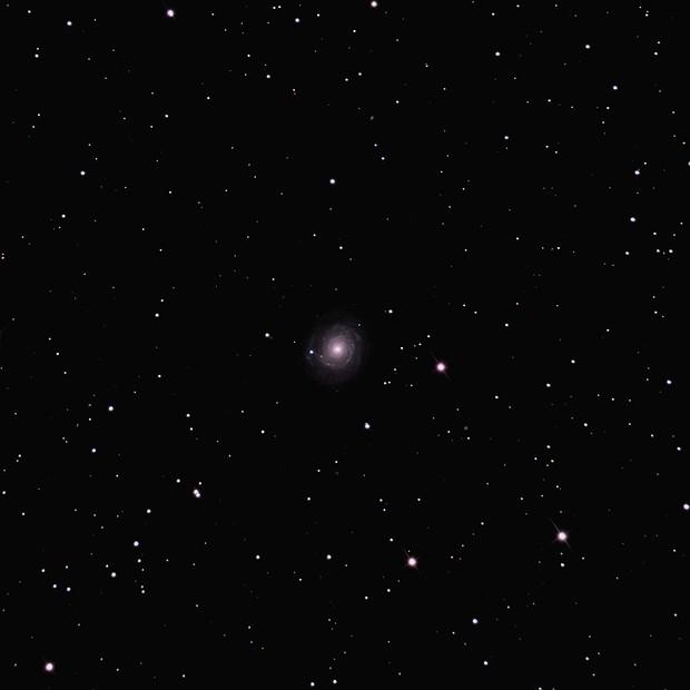 Supernova 2021 hpr in NGC3147,                                Wim Bijl