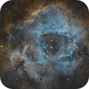 NGC 2264 - Rosette Nebula in SHO,                                Benny Colyn