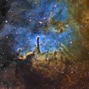 NGC 6823,                                Dan Wilson