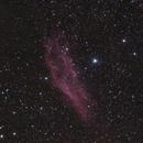 California Nebula,                                Jan Curtis