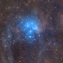 Pleiades and IC 341,                                Die Launische Diva