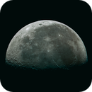 Moon,                                Ferfex
