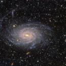 Spiral galaxy NGC6744 in Pavo,                                Rick Stevenson