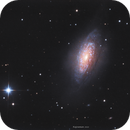 NGC3521 LRGB 2021,                                John