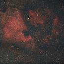 North American Nebula NGC7000,                                Darren Pursel