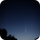 Comet NEOWISE 2020,                                Tim McCollum