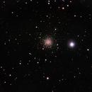 NGC 2419 - galactic wanderer,                                Tom Gray