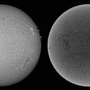 Sun/ mosaic/H- alpha/ 23/11/2015 09:48 UTC,                                Pawel Warchal