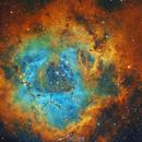 Rosette Nebula HST,                                Paweł Radomski