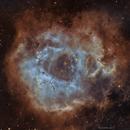 Rosette Nebula  SHO,                                John