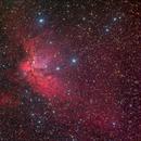 NGC 7380 Wizard nebula,                                Giovanni Paglioli