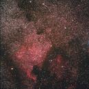 NGC7000,                                José Carlos Diniz
