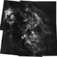 Starless 6 Panel Mosaic of Cygnus,                                Christopher Scott