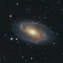 M81 on Lacerta 250 with ASI 183MC,                                Piet Vanneste