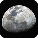 the Moon,                                Steven Hermans