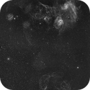 IC 405 + IC 410 + IC 417 + Simeis 147 and some clusters in Ha [2 panels mosaic],                                Ysty
