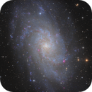 M33 Triangulum Galaxy,                                tommy_nawratil