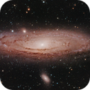 Andromeda Galaxy,                                Tim Richter