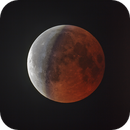 Eclipse of the Moon (HDR),                                Gianluca Belgrado