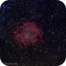Rosette Nebula (NGC2244),                                Hans-Peter Olschewski