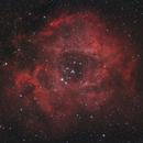 NGC2246,                                Michael Schulze