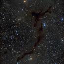 Barnard 150 - A dark nebula in Cepheus - LRGB,                                Daniel.P