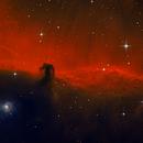 Horsehead Nebula,                                Matt Balkham