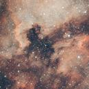 LDN 935 Dark Nebula,                                Alessandro Iannacci