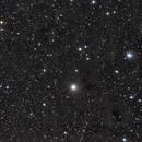 NGC 1555 Region,                                Jan Curtis