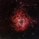 Rosette nebula,                                Andreas Hofer
